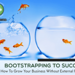 Bootstrapping to Success: How to Grow Your Business Without VC Funding